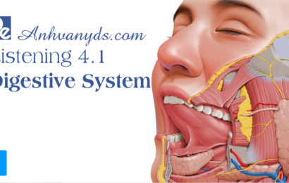 Listening Practice – Digestive System
