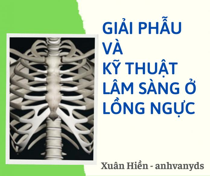 Giải phẫu và kỹ thuật lâm sàng ở lồng ngực